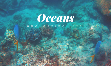 Oceans and Marine Life