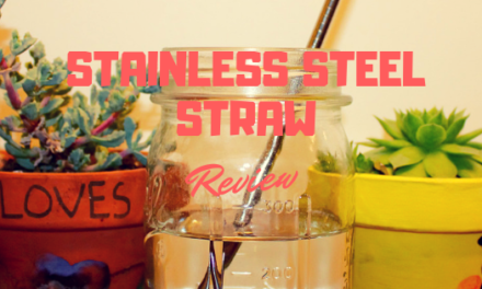 Exhaustive Stainless Steel Straw Review