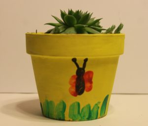 teacher's gift succulent