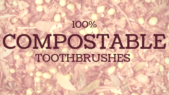 100% Biodegradable Toothbrush Options