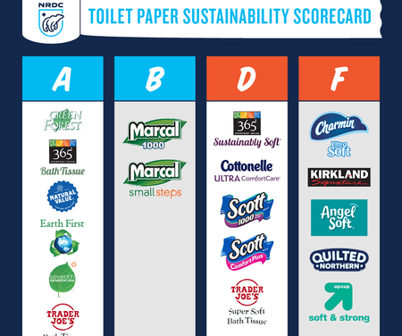 Use Environmentally Friendly Toilet Paper and Feel Good About Wiping Your Butt