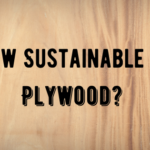 How Sustainable Is Plywood?