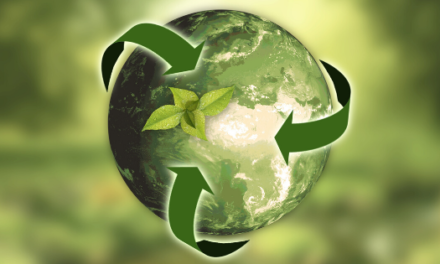 Eco Friendly food packaging- From Production To Recovery