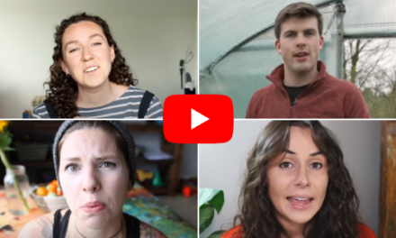 30 Sustainable Lifestyle YouTubers You Should Check Out